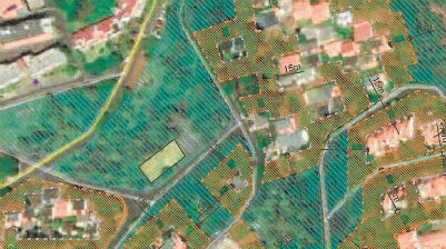 Edital 130/2019: Limpeza de terrenos na Matur