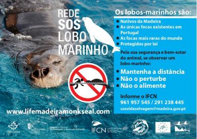 Rede SOS Lobo Marinho: proteção e segurança