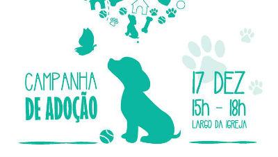 Campanha de Adoção: SOS Animal