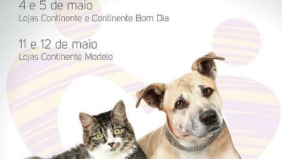 Recolha de alimentos para animais: banco solidário